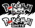 Platz 2: Pokemon Black Version