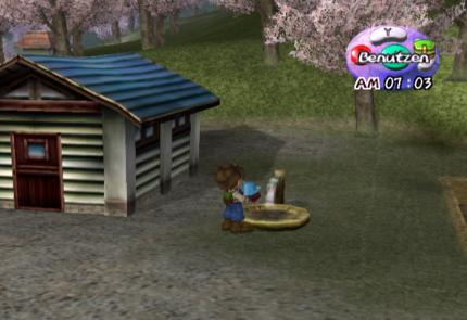 Action-Replay-Codes: Harvest Moon: A wonderful Life