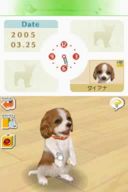 Import-Test Nintendogs