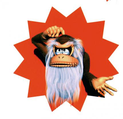 Donkey Kong Country SNES (5)