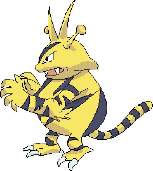 Pok mon world battle cup 2009 qualifikation runde 1 - Pokemon elektek ...
