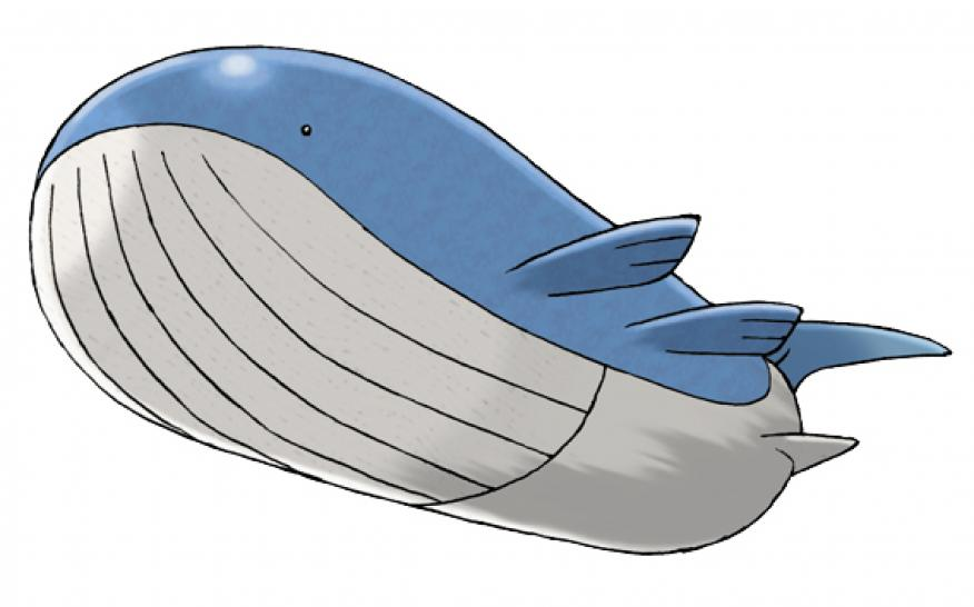 321 Wailord