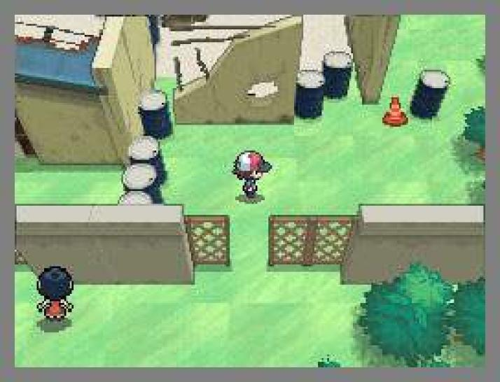 Screenshots aus Pokémon Black and White für DS. (1)