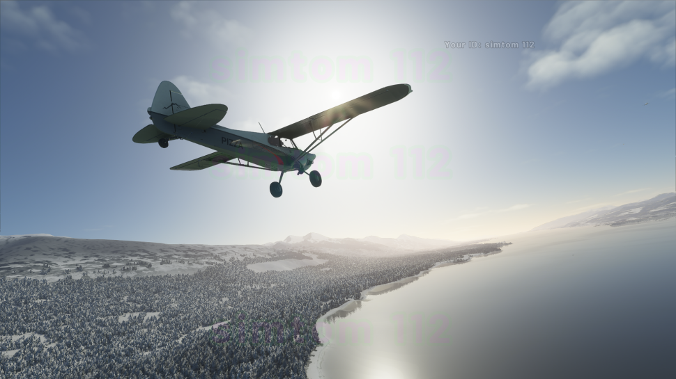 Microsoft Flight Simulator: Update 1.19.8.0 is here - Patch Notes for the Germany update