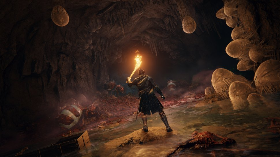 Elden Ring: Action RPG features four-player co-op