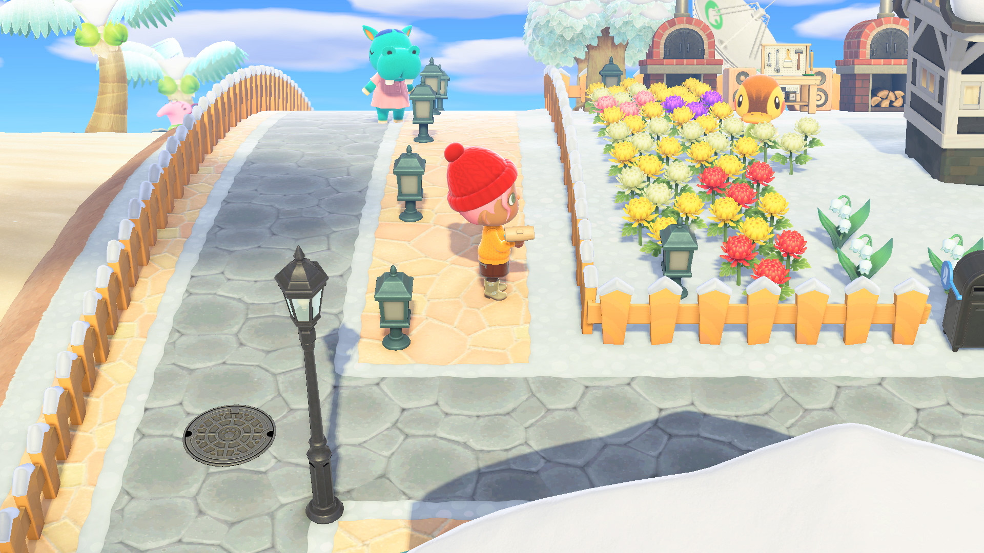 Animal Crossing: New Horizon in January: All fish, insects and marine animals in January